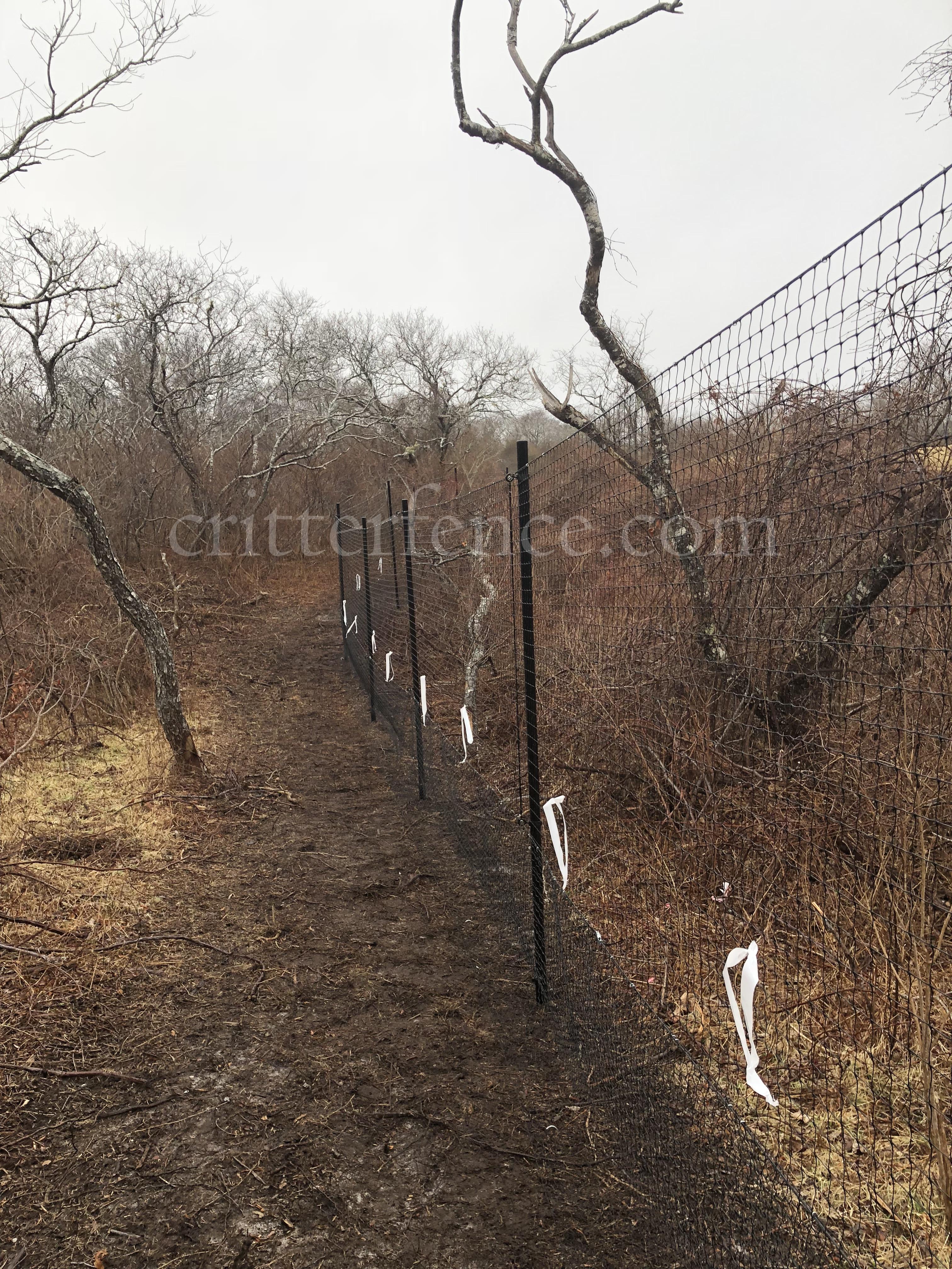 Nantucket Deer Fence