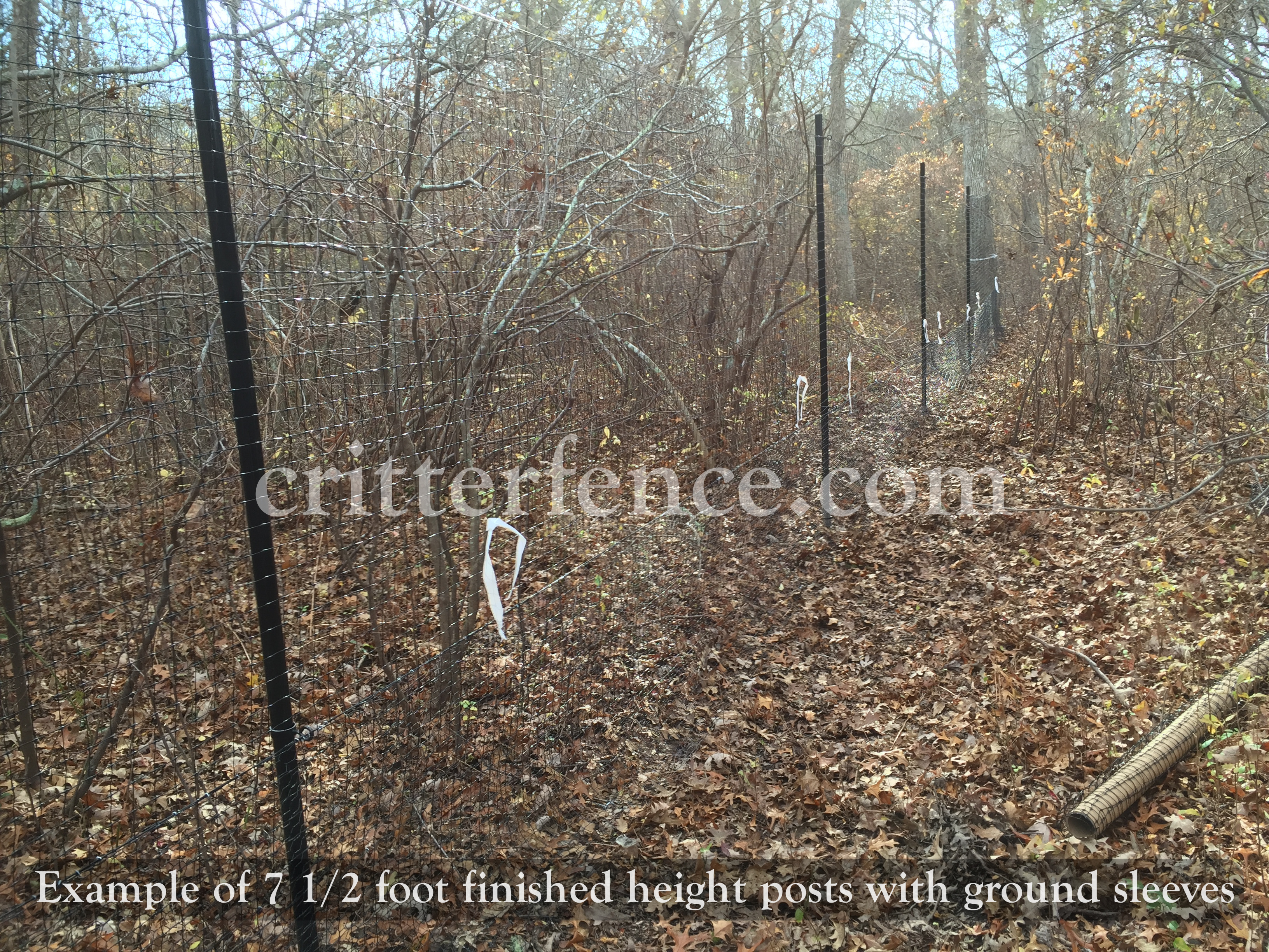 Deer Fence Height