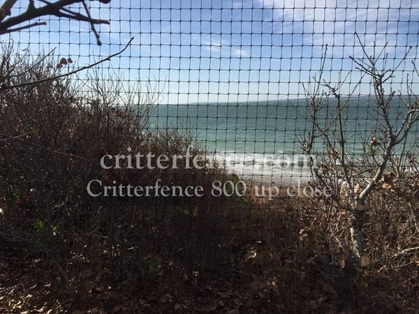 Critterfence 800 7 5 X 165